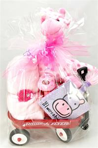 Newborn Gift Package - Welcome Baby Girl
